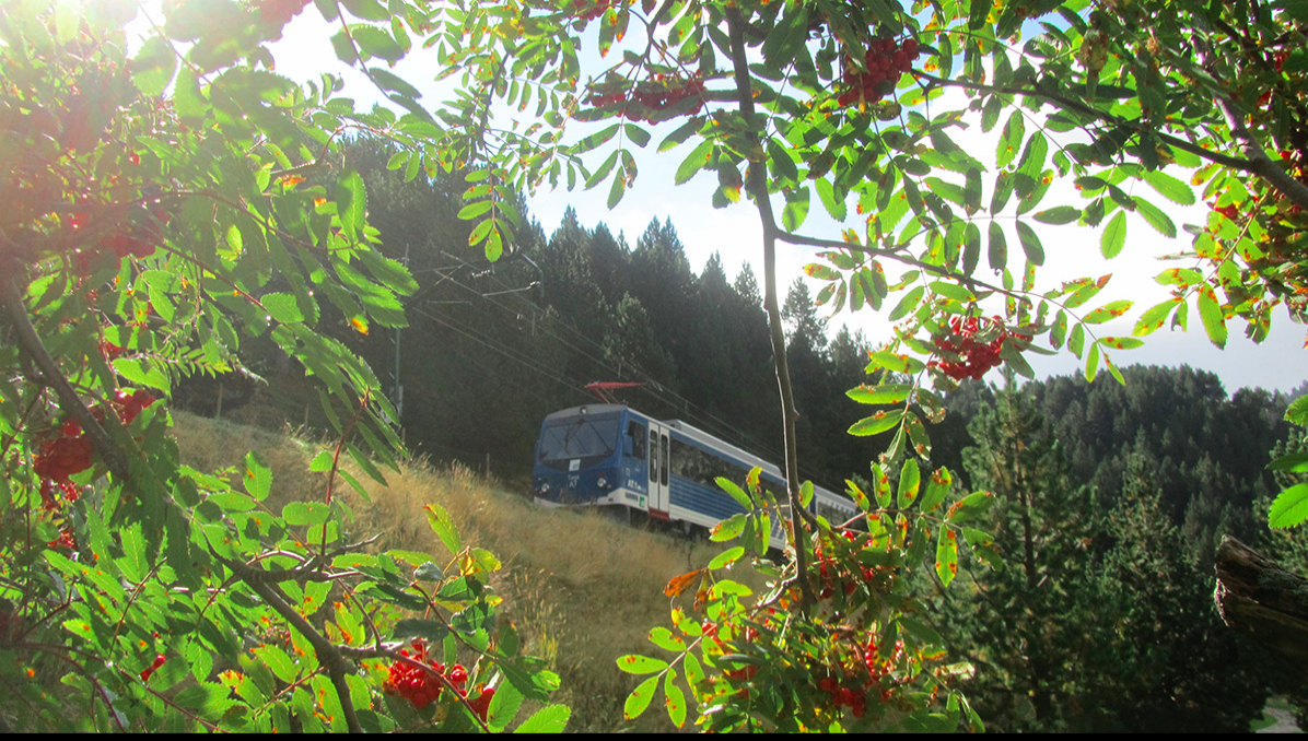 https://api-permanent-routes.livetrail.net/eaf49e13-b209-40ec-bb95-8372fba2d32c.jpg